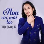 Download nhạc Mp3 Hoa Cài Mái Tóc trực tuyến