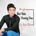 Tải bài hát online Hai Nửa Thương Đau (Single) mới