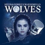 Nghe nhạc mới Wolves (Single)
