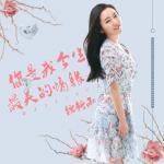 Tải bài hát Mp3 Anh Là Tình Duyên Đẹp Nhất Đời Em / 你是我今生最美的情缘 trực tuyến