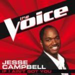 Nghe nhạc If I Ain't Got You (The Voice Performance) (Single) Mp3 miễn phí