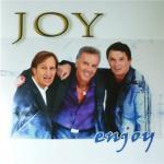 Tải bài hát Enjoy (2011)