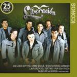 Tải bài hát hay Iconos 25 Exitos Mp3 trực tuyến