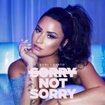 Tải bài hát hay Sorry Not Sorry (Single)