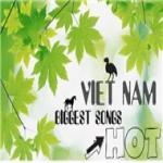 Tải bài hát mới Tổng Hợp Nhạc Việt Hot 2011 hay online