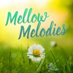 Download nhạc hay Mellow Melodies mới online