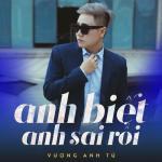 Nghe nhạc Mp3 Anh Biết Anh Sai Rồi (Single) mới