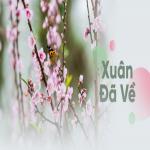 Download nhạc online Xuân Đã Về hot