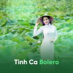Tải bài hát online Tình Ca Bolero