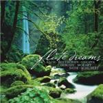 Download nhạc Flute dreams Mp3 online