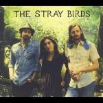 Nghe nhạc online The Stray Birds chất lượng cao