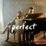 Nghe nhạc Perfect (Single) online