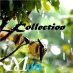 Tải nhạc Mp3 Mưa mới online