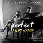 Nghe nhạc Perfect (Frdy Remix) (Single)