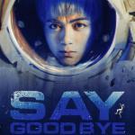 Download nhạc hay Say Goodbye (Single) hot