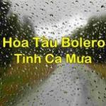Nghe nhạc Hòa Tấu Nhạc Bolero Tình Ca Mưa chất lượng cao