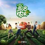 Nghe nhạc Mp3 Nông Dân Haha / 哈哈农夫 (Single) nhanh nhất
