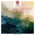Download nhạc online Entspanntsein - Nature Spirit (A Journey Into Magical & Relaxing Rainforest Sounds) Mp3 hot