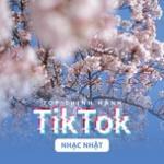 Download nhạc online Top Thịnh Hành TikTok (Nhạc Nhật) mới