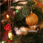 Tải bài hát Những Mùa Đông Yêu Dấu (Merry Christmas 2011) nhanh nhất