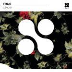 Tải nhạc mới True (Single) Mp3 online