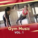 Nghe nhạc Gym Music (Vol. 1)