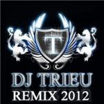 Tải bài hát hot Dj Triệu Remix 2012 trực tuyến