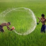 Nghe nhạc hay Những Bản Nhạc Phim Việt Hay Nhất online
