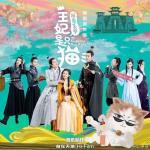 Download nhạc online Báo Cáo Vương Gia, Vương Phi Là Một Con Mèo OST nhanh nhất
