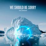 Download nhạc We Should Be Sorry (Single) Mp3 miễn phí