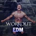 Nghe nhạc online Workout EDM Mp3