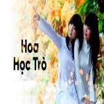 Tải nhạc Mp3 Hoa Học Trò hot