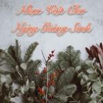 Tải bài hát Nhạc Việt Cho Ngày Giáng Sinh miễn phí