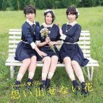 Download nhạc Omoidasenai Hana (Type D) (Single) mới