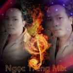 Tải bài hát Lá Xa Lìa Cành (DJ Ngoc Trung Remix) miễn phí