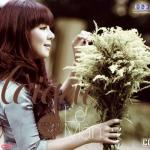 Download nhạc Giếng Quê Mp3 hot