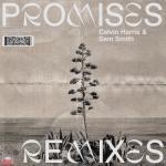 Tải bài hát mới Promises (MK Remix) online