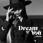 Tải bài hát hay Dream Of You