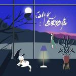 Download nhạc online Bạch Nguyệt Quang Và Nốt Chu Sa (白月光与朱砂痣) (DJ小鱼儿版)