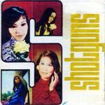 Download nhạc mới Xin Thời Gian Qua Mau (Pre 75) Mp3 online
