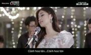 Video nhạc Cánh Hồng Phai mới nhất