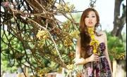 Tải nhạc mới Liên Khúc Xuân: Anh Cho Em Mùa Xuân; Lá Thư Ngày Tết; Xuân Tình Yêu hot