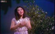 Tải nhạc hình Ánh Trăng Nói Hộ Lòng Em (月亮代表我的心)