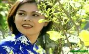 Tải video nhạc Khúc Nhạc Ngày Xuân Mp4