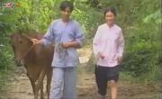 Tải nhạc hay Thương Quá Việt Nam miễn phí