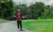 Tải nhạc hình hay Liên Khúc: Nhạc Sống Cha Cha Cha; Trách Ai Vô Tình online