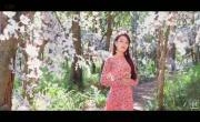 Video nhạc Lời Hẹn Đầu Xuân Mp4