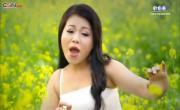 Tải nhạc Hơi Thở Mùa Xuân trực tuyến