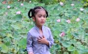 Tải video nhạc Con Quy Y Tam Bảo về điện thoại