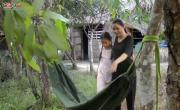 Xem video nhạc Về Thăm Quê Mẹ miễn phí
